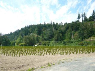 Photo 2: 47165 YALE Road in Chilliwack: Chilliwack E Young-Yale Land for sale : MLS®# R2459551