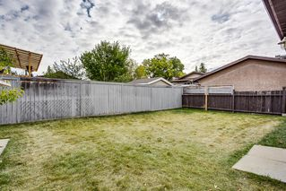 Photo 25: 85 BIG SPRINGS Drive SE: Airdrie Detached for sale : MLS®# A1037213