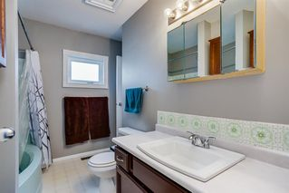 Photo 11: 85 BIG SPRINGS Drive SE: Airdrie Detached for sale : MLS®# A1037213