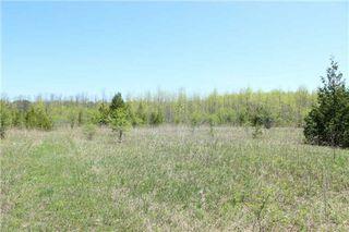 Photo 13: Pt Lt 1 Concession 13 Road in Brock: Rural Brock Property for sale : MLS®# N3143558