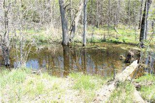 Photo 4: Pt Lt 1 Concession 13 Road in Brock: Rural Brock Property for sale : MLS®# N3143558