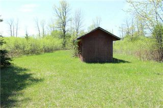 Photo 12: Pt Lt 1 Concession 13 Road in Brock: Rural Brock Property for sale : MLS®# N3143558