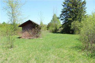 Photo 9: Pt Lt 1 Concession 13 Road in Brock: Rural Brock Property for sale : MLS®# N3143558