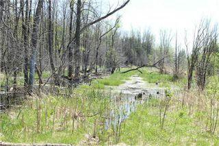 Photo 3: Pt Lt 1 Concession 13 Road in Brock: Rural Brock Property for sale : MLS®# N3143558