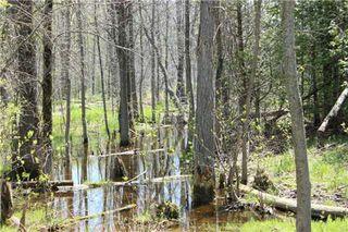 Photo 6: Pt Lt 1 Concession 13 Road in Brock: Rural Brock Property for sale : MLS®# N3143558