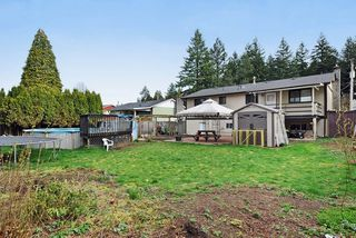 Photo 19: 1925 LYNN Avenue in Abbotsford: Central Abbotsford House for sale : MLS®# R2043834