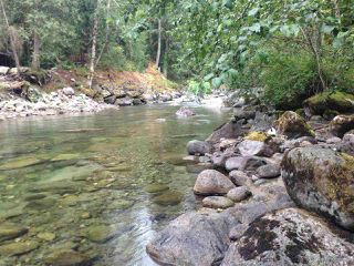 Photo 3: 19512 SILVER SKAGIT Road in Hope: Hope Silver Creek Land for sale : MLS®# R2065300