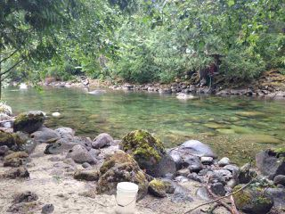 Photo 1: 19512 SILVER SKAGIT Road in Hope: Hope Silver Creek Land for sale : MLS®# R2065300