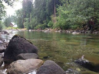 Photo 5: 19512 SILVER SKAGIT Road in Hope: Hope Silver Creek Land for sale : MLS®# R2065300