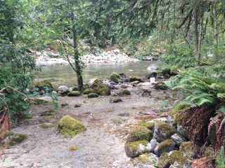 Photo 2: 19512 SILVER SKAGIT Road in Hope: Hope Silver Creek Land for sale : MLS®# R2065300