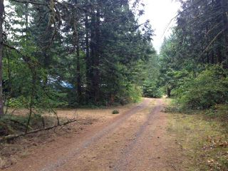 Photo 12: 19512 SILVER SKAGIT Road in Hope: Hope Silver Creek Land for sale : MLS®# R2065300