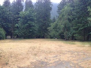 Photo 9: 19512 SILVER SKAGIT Road in Hope: Hope Silver Creek Land for sale : MLS®# R2065300