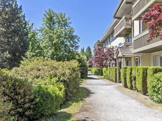 "Photo 1: 30 5780 HASTINGS Street in Burnaby: Capitol Hill BN Condo for sale in ""Kensington Gardens"" (Burnaby North)  : MLS®# R2067975"