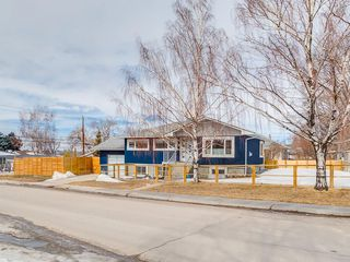 Photo 29: 2053 27 Street SE in Calgary: Southview House for sale : MLS®# C4174204