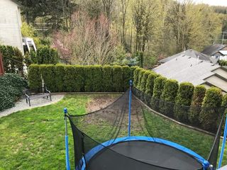 Photo 19: 35548 TWEEDSMUIR Drive in Abbotsford: Abbotsford East House for sale : MLS®# R2258962