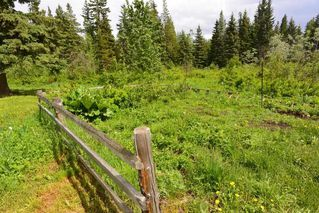 """Photo 5: 28062 WALCOTT QUICK Road in Smithers: Smithers - Rural House for sale in """"GRANTHAM AREA"""" (Smithers And Area (Zone 54))  : MLS®# R2281302"""