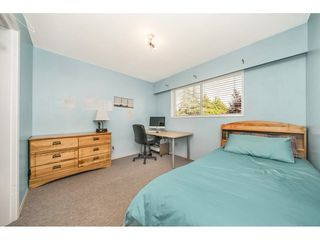 Photo 11: 3243 NEWBERRY Street in Port Coquitlam: Lincoln Park PQ House for sale : MLS®# R2301176
