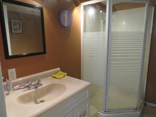 Photo 21: 20523 48 Avenue in Edmonton: Zone 58 House for sale : MLS®# E4142755