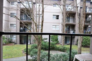 "Photo 12: 210A 2615 JANE Street in Port Coquitlam: Central Pt Coquitlam Condo for sale in ""BURLEIGH GREEN"" : MLS®# R2340367"