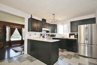 Photo 8: 17110 96 Street in Edmonton: Zone 28 House for sale : MLS®# E4152632