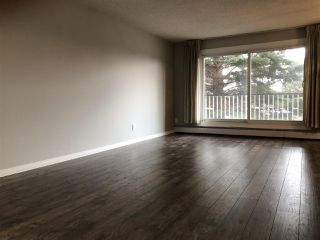 Photo 7: 213 5520 RIVERBEND Road in Edmonton: Zone 14 Condo for sale : MLS®# E4158354