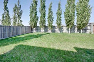 Photo 29: 6165 MAYNARD Crescent in Edmonton: Zone 14 House for sale : MLS®# E4159150