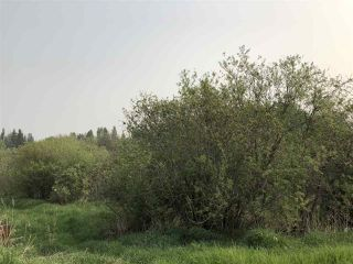 Photo 3: : Rural Westlock County House for sale : MLS®# E4163754