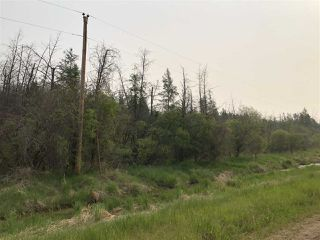 Photo 4: : Rural Westlock County House for sale : MLS®# E4163754