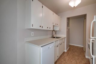 Photo 10: 119 5730 RIVERBEND Road in Edmonton: Zone 14 Condo for sale : MLS®# E4165691