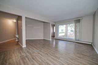 Photo 4: 119 5730 RIVERBEND Road in Edmonton: Zone 14 Condo for sale : MLS®# E4165691