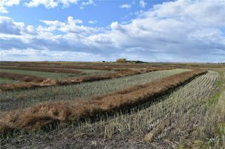 Photo 4: 4;27;26;12;NE in Rural Rocky View County: Rural Rocky View MD Land for sale : MLS®# C4270198