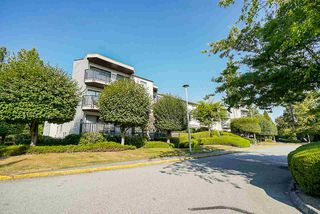 "Main Photo: 302 9952 149 Street in Surrey: Guildford Condo for sale in ""TALL TIMBERS"" (North Surrey)  : MLS®# R2492246"