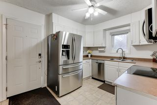 Photo 14: 11948 76 Street in Edmonton: Zone 05 House for sale : MLS®# E4213647