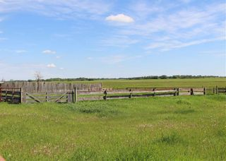 Photo 12: 555077 RR162: Rural Lamont County House for sale : MLS®# E4218338