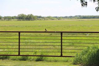 Photo 9: 555077 RR162: Rural Lamont County House for sale : MLS®# E4218338