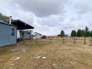 Photo 45: 24024 HWY 37: Rural Sturgeon County House for sale : MLS®# E4219082