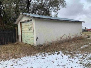 Photo 50: 24024 HWY 37: Rural Sturgeon County House for sale : MLS®# E4219082