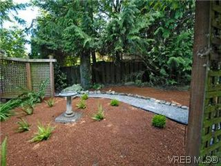 Photo 20: 4090 Torquay Dr in VICTORIA: SE Mt Doug Single Family Detached for sale (Saanich East)  : MLS®# 589552