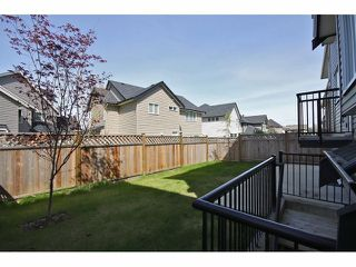 Photo 10: 21015 80A Avenue in Langley: Willoughby Heights House for sale : MLS®# F1308420