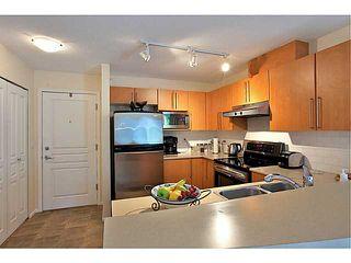 Photo 13: 413 1150 E 29TH Street in North Vancouver: Lynn Valley Condo for sale : MLS®# V1053192