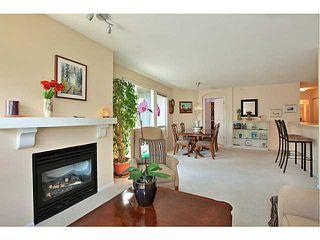 Photo 5: 413 1150 E 29TH Street in North Vancouver: Lynn Valley Condo for sale : MLS®# V1053192
