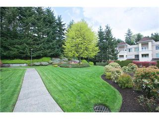 "Photo 20: 202 523 WHITING Way in Coquitlam: Coquitlam West Condo for sale in ""BROOKSIDE MANOR"" : MLS®# V1059447"