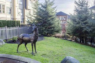 "Photo 18: 308 2968 SILVER SPRINGS Boulevard in Coquitlam: Westwood Plateau Condo for sale in ""TAMARISK"" : MLS®# R2021016"