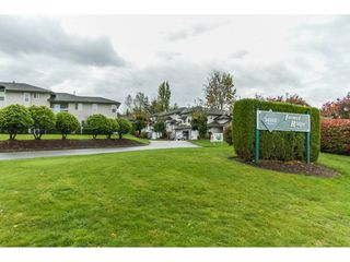 "Photo 2: 21 34332 MACLURE Road in Abbotsford: Central Abbotsford Townhouse for sale in ""IMMEL RIDGE"" : MLS®# R2117119"