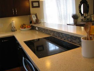 Photo 13: 2774 QU'APPELLE Boulevard in : Juniper Heights House for sale (Kamloops)  : MLS®# 138911