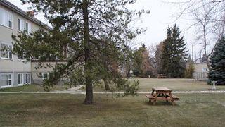 Photo 3: 7 11604 112 Avenue in Edmonton: Zone 08 Condo for sale : MLS®# E4053698