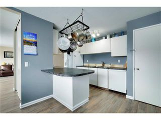 Photo 8: 80 MACEWAN PARK Link NW in Calgary: MacEwan Glen House for sale : MLS®# C4107280