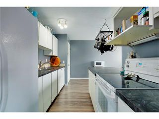 Photo 9: 80 MACEWAN PARK Link NW in Calgary: MacEwan Glen House for sale : MLS®# C4107280