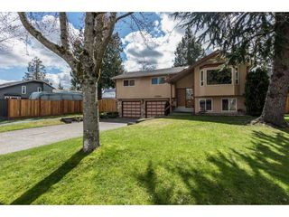 Photo 2: 14866 95 Avenue in Surrey: Fleetwood Tynehead House for sale : MLS®# R2152335