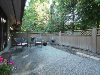 "Photo 16: 32 9101 FOREST GROVE Drive in Burnaby: Forest Hills BN Townhouse for sale in ""ROSSMOOR"" (Burnaby North)  : MLS®# R2192598"